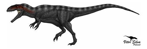 Vitor Silva  Paleoartista Carcharodontosauridae