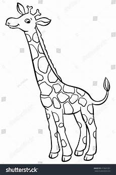 coloring pages animals giraffe stock vector