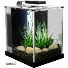 achat aquarium 20l