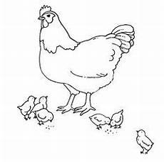 Malvorlage Huhn Ostern Malvorlage Ostern Huhn Malvorlagen Ostern