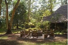 the forest feuerstelle migunga forest tented c sundowner wildlife holidays