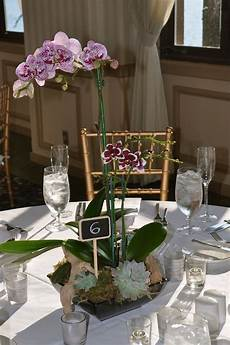 Orchid Wedding Ideas image result for orchid plant wedding centerpiece orchid