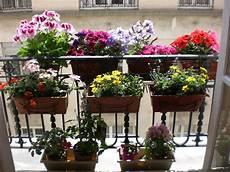 Mon Balcon Fleuri Small Balcony Garden Balcony Garden