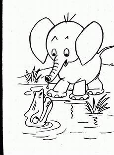 animals coloring pages 16939 animals coloring pages coloring home