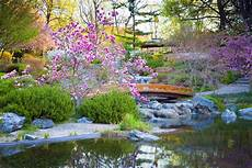 japanese garden elements types exles pictures