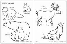 free coloring pages of alaska animals 17383 diorama school ideas on dioramas habitats and wolf howling