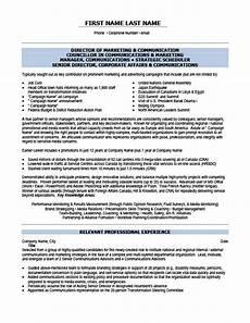marketing and sales executive resume template premium