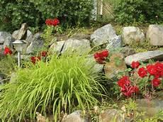 Steingarten Anlegen Garten De Hat Die Passende Anleitung