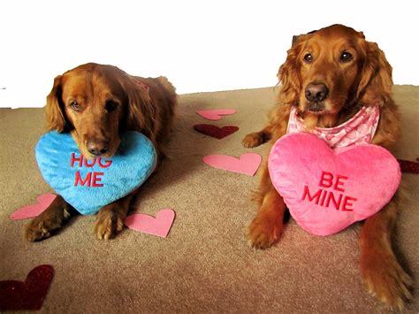 Demotivational Valentines