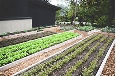 Kitchen Garden Farm by Fall And Winter Gardening Seattle Farm Company