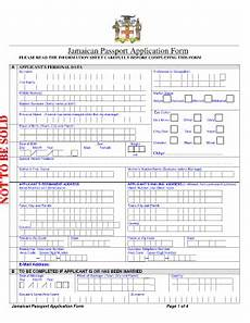 how to fill out passport form fill online printable fillable blank pdffiller