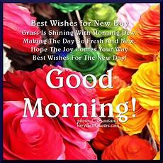 best wishes for morning best wishes for a new day pictures photos