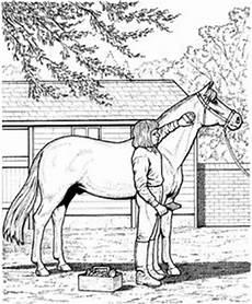 Malvorlage Pferde Turnier Ausmalbilder Pferde Mit Reiterin Ausmalbilder Pferde