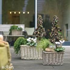 blumenkästen dekorieren winter bepflanzungen f 252 r balkon und terrasse im winter