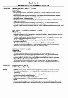 software project leader resume sles velvet