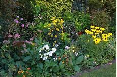 pflanzen f 252 r schatten gartentipps galanet