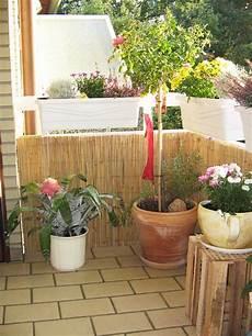 balkon bambus sichtschutz bambus matte haltbarkeit der sichtschutzmatte wichtige infos
