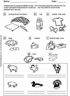 plants and animals worksheets for kindergarten 13507 1000 images about animal characteristics on animal classification activity