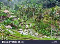 Die Republik Indonesien Stockfotos Die Republik