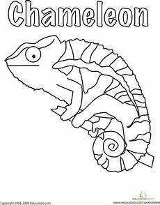 animal coloring pages for 1st grade 17301 color the chameleon coloring pages rainforest crafts animal coloring pages
