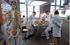 kedokteran jerman zeit zu haben zum leben sistem kuliah kedokteran di jerman