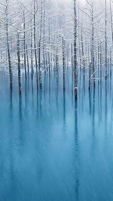 iphone wallpaper winter trees winter trees htc hd wallpaper best htc one wallpapers