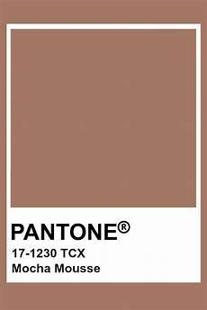 mocha mousse paint color pantone mocha mousse in 2019 pantone colour palettes pantone pantone swatches
