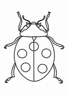 Malvorlagen Insekten Pdf Ausmalbild Schmetterling Umriss X13 Ein Bild Zeichnen