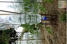 fabriquer un goutte a goutte avec un tuyau 45858 arrosage goutte a fait maison bouteille ventana