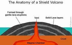 case study 3 shield volcano mauna loa hawaii