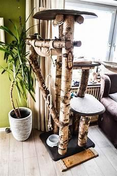 Kratzbaum Baumstamm Selber Bauen Best Kratzbaum Selber