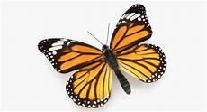 Schmetterling 3d - monarch butterfly 3d model 1142930 turbosquid