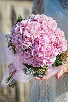 88 best images about hortensia on flower - Brautstrauß Hortensien Und