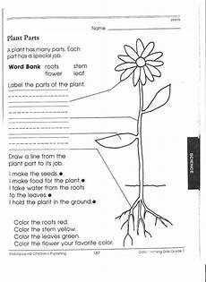 free printable worksheets on plants for grade 3 13687 17 best images about pk 3rd science plants plant parts and science