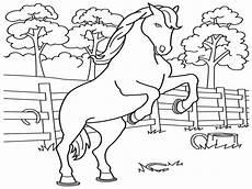 Mewarnai Gambar Kuda Kreasi Warna