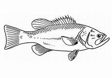 Fische Malvorlagen Ausschneiden Malvorlage Fisch Wood Carving Fisch Vorlage