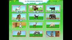 animals around us worksheet for grade 1 14242 animals for learn animals the animals around us evs grade 1