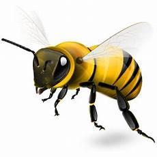 Hikmah Lebah Sifatnya Tamansyurga