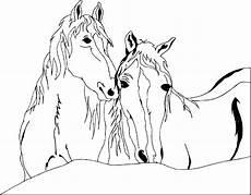 zwei pferde ausmalbild malvorlage pferde