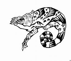 chamaeleon gemustert ausmalbild malvorlage tiere