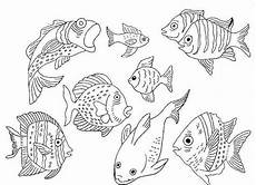 Malvorlage Fische Aquarium Marias Decoideen Windocolor Verschiedenes 3