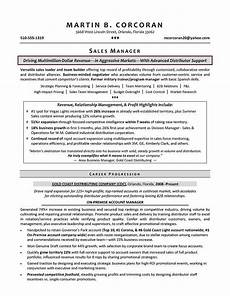 image result for resume executive vice president project