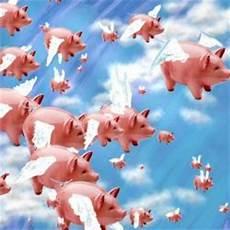 maiali volanti i maiali volanti e l organizzazione mondiale della sanit 224