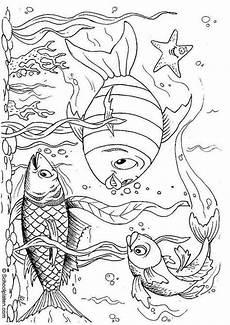 malvorlage fische bilder f 252 r schule und unterricht