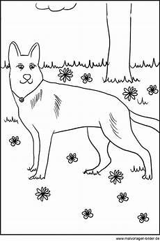 ausmalbilder hunden kostenlose hund vorlage zum