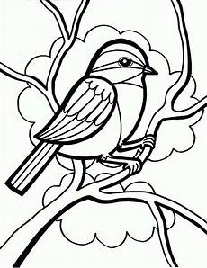 drawing a bird coloring page color