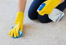 Teppich Reinigen Das N 246 Tige Werkzeug Kaufen
