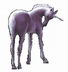 pferde animierte gifs bilder