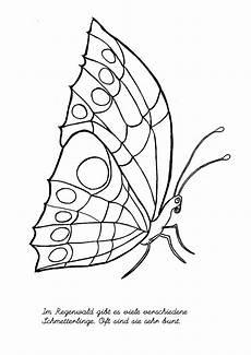 Malvorlage Maske Schmetterling Regenwald Bastel Malvorlagen Abenteuer Regenwald