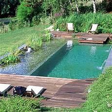 construire sa piscine une piscine naturelle